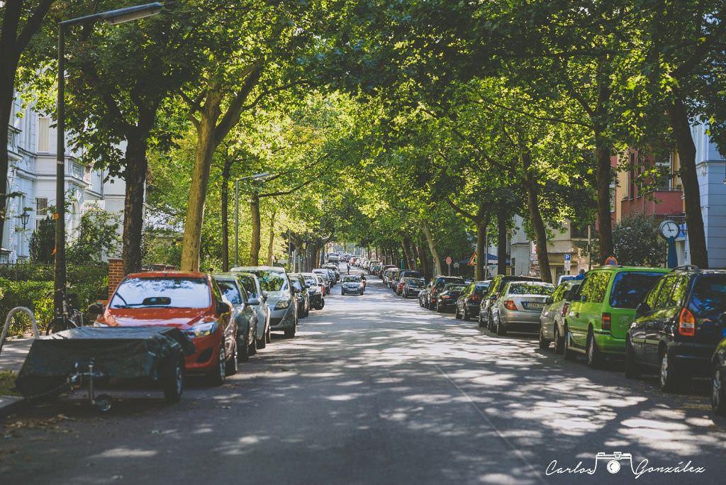 Carlos Gonzalez - www.carlosgonzalezf.com - Imagen-0099_WEB